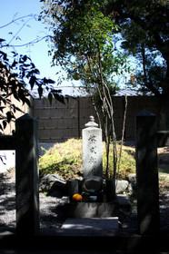 Murasaki04