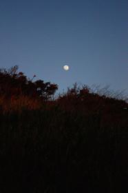 箱石浜の月