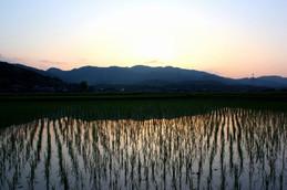 滋賀県甲南町の田園風景