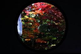 「悟りの窓」から見る紅葉