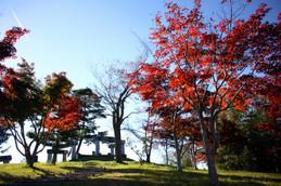 秋深まる丹波自然公園