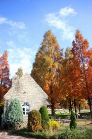 秋色のブルーメの丘