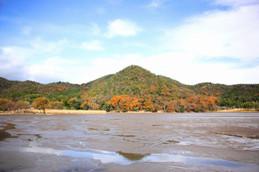 鯉揚げシーズンの広沢池(ひろさわのいけ)