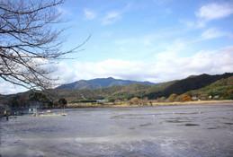鯉揚げで水の抜けた広沢池(ひろさわのいけ)