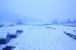 左京区大原・雪景色
