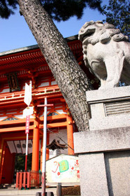 大晦日の京都はこんな青空