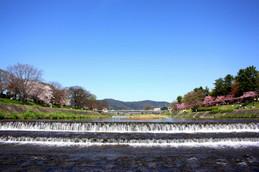 賀茂川飛び石からの眺め