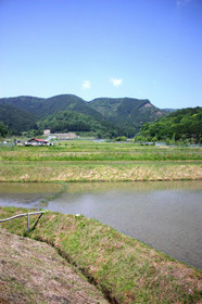 伊香立途中町付近の田園