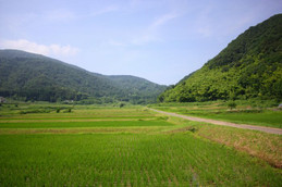 舞鶴の田園風景