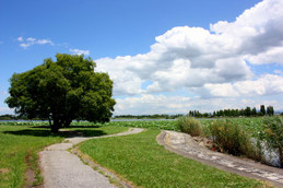 烏丸半島の夏景色