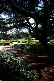 静寂の京都府立植物園