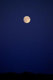 夜空で輝きだした名月