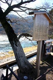 嵐山・渡月橋の案内板