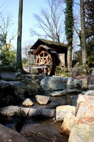 植物園の水車