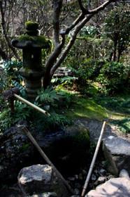 植物園の水琴窟