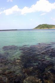美しく青い八丁浜の海
