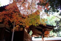西賀茂・神光院