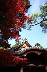 三大弘法のひとつ神光院