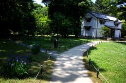 京都御苑閑院宮跡 庭園2
