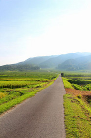 伊香立・晩夏の田園風景