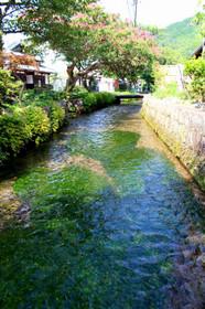 醒ヶ井・地蔵川
